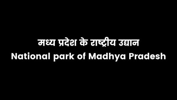 Read more about the article National park of Madhya Pradesh in hindi 2021